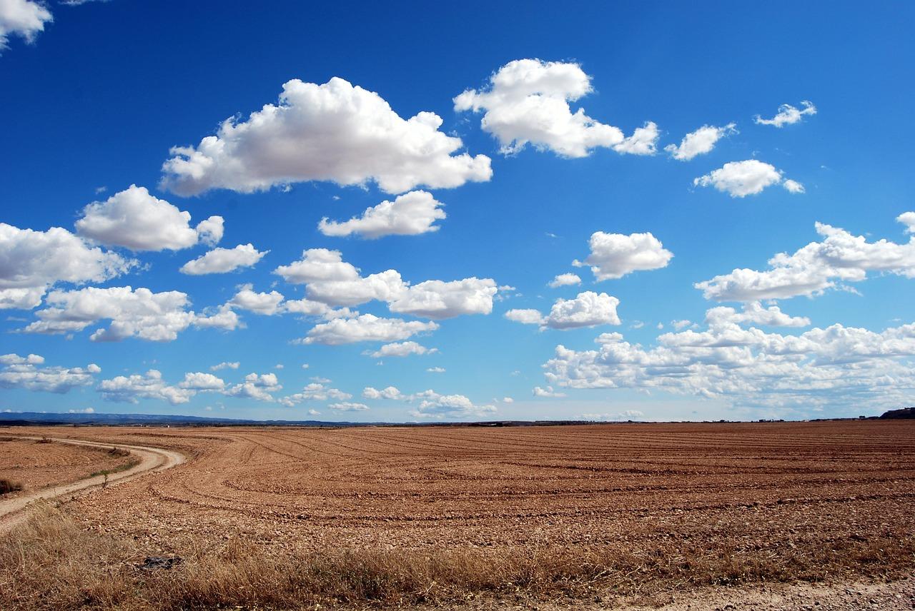 голубое небо и поле