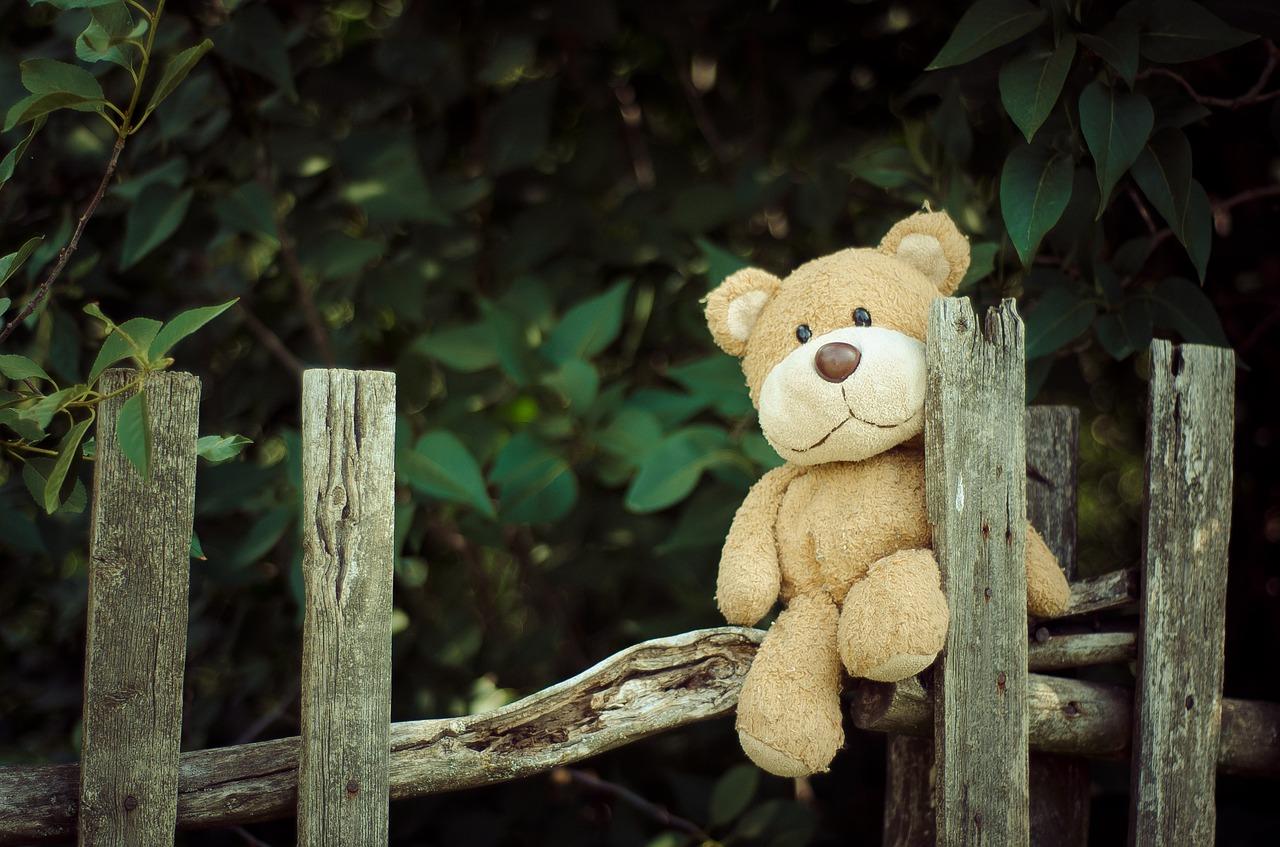 плюшевый медведь на заборе