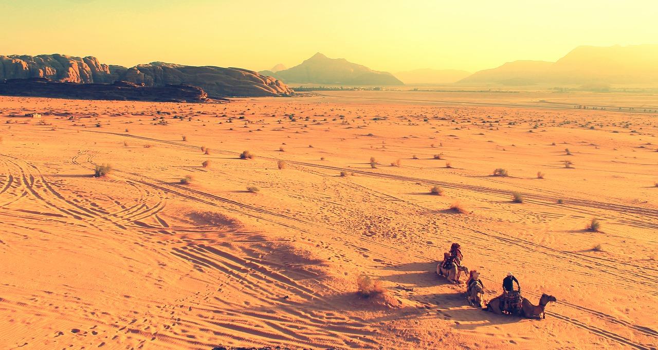 пустыня и верблюды